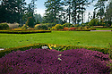 OR01168-00...OREGON - Heather and tulips blooming along the Oregon Coast at Shore Acres State Park.
