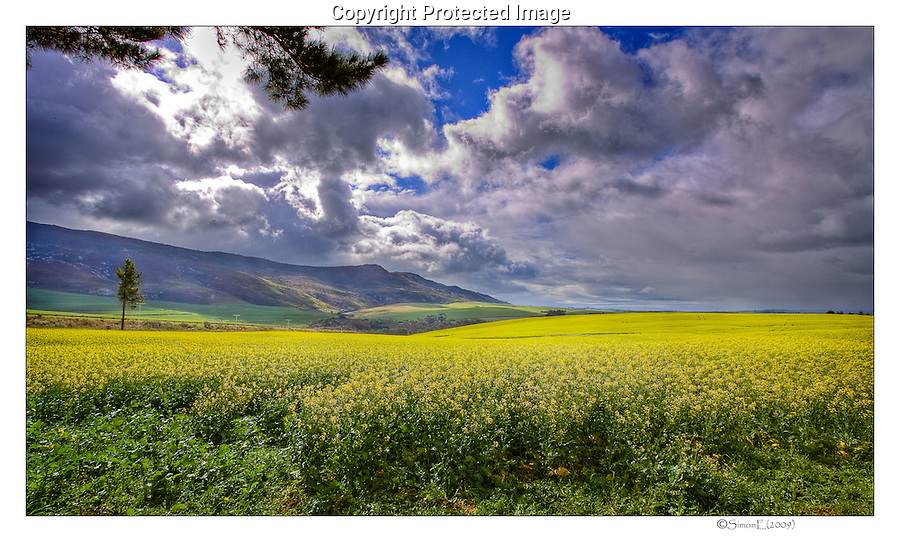 South African Landscapes and Scenes