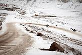Vor allem in den D&ouml;rfern und den abgelegenen Landesteilen ist<br />das Elend in Moldawien noch immer immens. Tausende k&auml;mpfen,<br />vor allem in den Wintermonaten um das nackte &Uuml;berleben, jeden<br />Tag aufs neue geht es darum das N&ouml;tigste an Verpflegung zur<br />Verf&uuml;gung zu haben und ein bisschen zu heizen, um nicht zu<br />erfrieren. Von dieser prek&auml;ren Situation merken viele Besucher, die<br />nach Chisinau kommen, auf den ersten Blick nichts, bereits einige<br />Kilometer au&szlig;erhalb &auml;ndert sich die Situation bereits deutlich&hellip;// Moldova is still the poorest country of Europe. Hopes to join the European Union are high. After progress in the past years tuberculosis is on the rise again. The number of new patients raise since 2010 and is on a level that has not been reached since the late 90s.