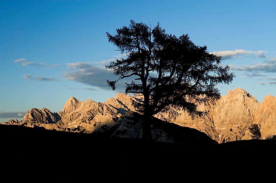 Mount Spik and Mount Prisojnik, view from &quot;Sleme&quot;<br /> Julian Alps<br /> Triglav National Park, Slovenia<br /> July 2009