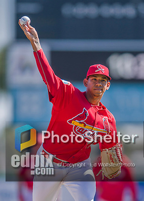 6 March 2016: St. Louis Cardinals pitcher J.C. Sulbaran warms up prior to a Spring Training pre-season game against the Washington Nationals at Roger Dean Stadium in Jupiter, Florida. The Nationals defeated the Cardinals 5-2 in Grapefruit League play. Mandatory Credit: Ed Wolfstein Photo *** RAW (NEF) Image File Available ***
