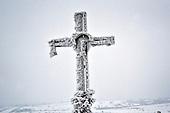 Niegowa 01.2010 Poland<br /> Frozen Cross on the Road.<br /> Three atmospheric forces: rain, snow and frost have changed into an ecological disaster the Myszkowski district in the Czestochowskie province, located 230 kilometers south of Warsaw. Almost 95% of all trees are down.Thousands of homes are left without electricity.<br /> Photo: Adam Lach / Napo Images for Newsweek Polska<br /> <br /> Zamarzniety krzyz na drodze w pow.myszkowskim.<br /> Wstepnie &quot;tylko&quot; 95% scietych drzew w dwoch powiatach. 0.5 miliona metrow szesciennych zniszczonych lasow..Tysiace gospodarstw bez pradu. Wszyscy maja swiadomosc, ze na kumulacje trzech niekorzystnych .zjawisk atmosferycznych rady nie ma.Trzy zjawiska kt&oacute;re zamienily jeden z obszarow Polski w istna katastrofe ekologiczna: deszcz, snieg i szadz.<br /> Fot: Adam Lach / Napo Images dla Newsweek Polska