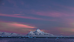 Icebergs float in the ocean in front of a mountain peak with pink and purple skies above, Antarctica
