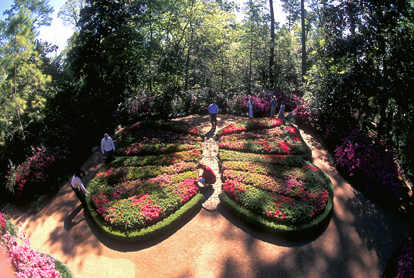 Butterfly Shaped Gardens At Bayou Bend Stockyard Photos