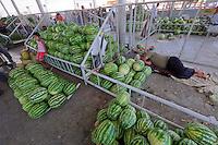 Uzbekistan, Samarqand.<br /> Siob Bazaar. Nap on Watermelons.