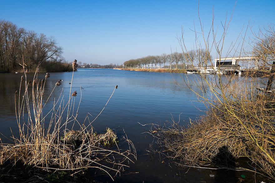 Nederland, Amsterdam, 13 feb 2015<br /> Natuurgebiedje bij Amsterdam Oost, nabij de Zeeburgerbrug. <br /> Foto: (c) Michiel Wijnbergh