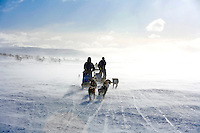 HUSKY SLEDGING, ARCTIC CIRCLE, March 2007