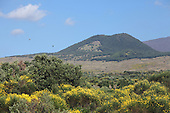 Overgrown old cinder cone on west flank of Mount Etna Volcano, Sicily, Italy.