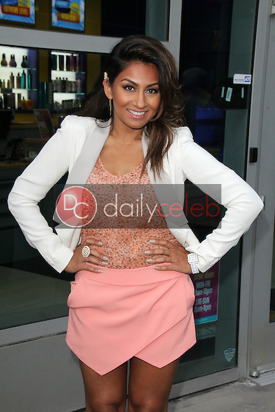 Amrapali Ambegaokar<br />
