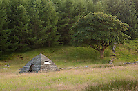 Beehive Bothy next to the forest, near Laggangarn on the Southern Upland Way, Scotland