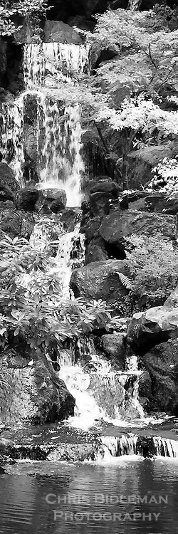 Heavenly Falls in the lower pond strolling garden of the Portland Japanese Garden displayed as a black & white photo in panorama format