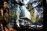 Science and engineering building at UCSC in redwoods
