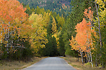 Idaho, Boundary County, Bonners Ferry. West side road at the base of the Selkirk Range west of Bonners Ferry with Autumn colors.