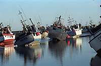Gillnetters lie on their side in Goose Spit in the Egegik River fishing district in Bristol Bay, Alaska on July 6, 1997. Bristol Bay is home to the world's largest sockeye salmon fishery.  The commercial salmon drift gillnet fishing fleet is limited to boats no longer than 32 feet in length.  There were over 1,800 permanent entry permits listed in 2002, required per boat.  Typically boats fish with two or three deckhands.  The fishery is managed by the Alaska Department of Fish & Game and is a sustainable fishery. Peak of the season is around July 4th in this fishery which lasts about a month. The rivers also get a fair amount of chum, king, and chinook salmon.  Bristol Bay is located in the southwest part of Alaska.