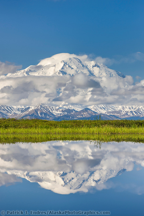 Denali, North America's highest peak reflects in a small tundra pond in Denali National Park, Alaska.