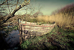 Abandoned wooden rowing boat in  long grass in Newport