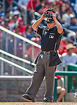 1 June 2014: MLB Umpire Clint Fagan officiates at home plate during a game between the Washington Nationals and the Texas Rangers at Nationals Park in Washington, DC. The Rangers shut out the Nationals 2-0 to salvage the third the third game of their 3-game inter-league series. Mandatory Credit: Ed Wolfstein Photo *** RAW (NEF) Image File Available ***