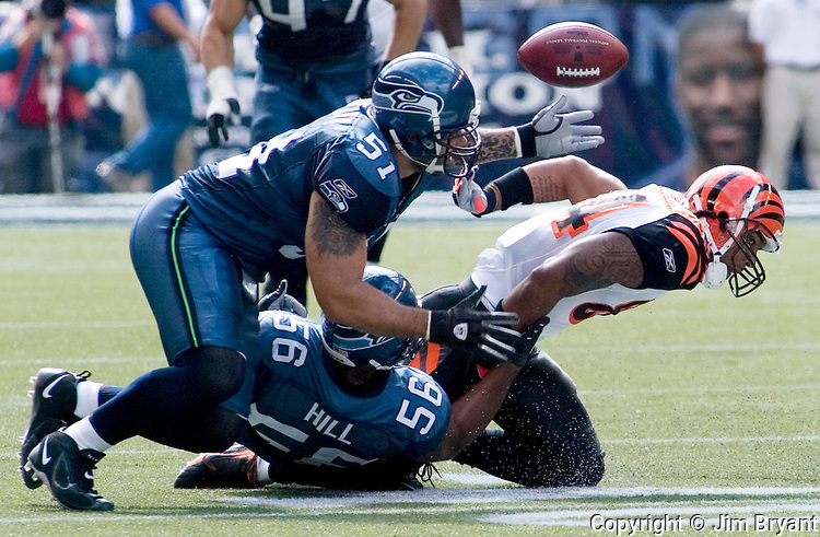 Seattle Seahawks linebacker Lofa Tatupu, (L) goes after Cincinnati Bengals wide receiver T.J. Houshmanzadeh's  (R) fumble after he got hit by Seattle Seahawks linebacker Leroy Hill (51) in the second quarter at Qwest Field in Seattle on September 23, 2007. The fumble was recovered by Seahawks cornerback Kelly Jennings.  (Jim Bryant Photo)