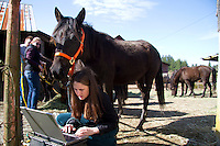 Under the watchful eye of an Arabian horse, veterinarian Hannah Mueller, DVM, creates records of horses on Summer Raffo's farm in Oso, Wash. during a voluntary veterinary visit on April 1, 2014. The 16 horses belong to Summer Raffo, who died in the Oso mudslide on March 22, 2014. Along with help from another vet and volunteers the horses received basic vet care, grooming and were fed fresh hay. Mueller is co-founder and vice president of the Northwest Equine Stewardship Center and practice owner of Cedarbrook Veterinary Care.