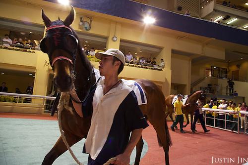 An assistant parades a horse in the parade ring before a race at the Hong Kong Jockey Club.