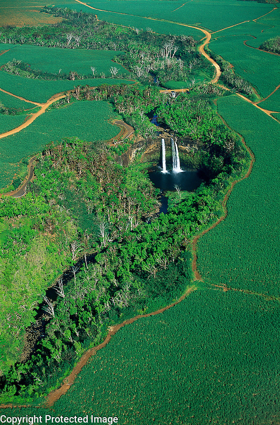 ... view of Wailua Falls among sugar cane fields, Kauai, Hawaii, USA