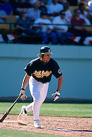 LAS VEGAS, NV - Jason Giambi of the Oakland Athletics in action against the Detroit Tigers during a game at Cashman Field in Las Vegas, Nevada in 1996. Photo by Brad Mangin