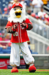 25 April 2010: Washington Nationals' mascot Screech entertains the fans prior to a game against the Los Angeles Dodgers at Nationals Park in Washington, DC. The Nationals shut out the Dodgers 1-0 to take the rubber match of their 3-game series. Mandatory Credit: Ed Wolfstein Photo