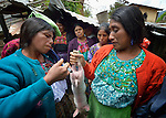 Audelina Vasquez Lopez (left) injects a pig during a workshop at an eco-agricultural training center in Comitancillo, Guatemala. The center is sponsored by the Maya Mam Association for Investigation and Development (AMMID).