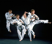 MARTIAL ARTS (KARATE) - STROBOSCOPIC<br /> (Variations Available)<br /> Study of range of motion