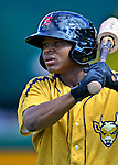 8 July 2012: State College Spikes infielder Jodaneli Carvajal awaits his turn in the batting cage prior to a game against the Vermont Lake Monsters at Centennial Field in Burlington, Vermont. The Lake Monsters rallied from a 2-0 late inning deficit, to defeat the Spikes 8-2 in NY Penn League action. Mandatory Credit: Ed Wolfstein Photo