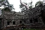 The ruins of Ta Prohm at Angkor Thom, Cambodia. June 7, 2013.