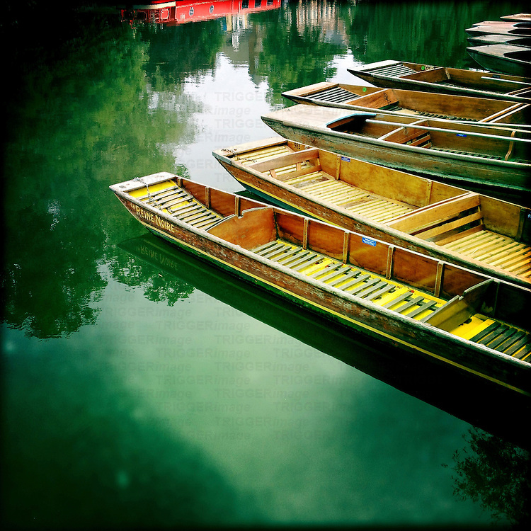 Punts moored by river bank, Cambridge, Cambridgeshire, England