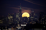he planting or milk moon rose over San Francisco skyline shortly after sunset seen from Fort Baker in Sausalito.