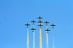 AIRSHOWS.  CANADIAN SNOWBIRDS AND OTHERS