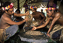 Making sakau, a mildly narcotic drink prepared from root of a pepper plant (Piper methysticum). The root is pounded and strained through hibiscus fibers into a coconut cup. Pohnpei, Micronesia.