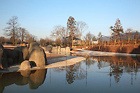 The pool of the open giraffe enclosure in the Zone Sahel-Soudan, at the new Parc Zoologique de Paris or Zoo de Vincennes, (Zoological Gardens of Paris or Vincennes Zoo), which reopened April 2014, part of the Musee National d'Histoire Naturelle (National Museum of Natural History), 12th arrondissement, Paris, France. Picture by Manuel Cohen