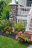 Front porch of house with hanging swing, container garden pot of calibrachoa annual flowers, annuals and perennials in mulched black foundation plantings, coleus, salvia, Echinacea, hydrangea, lawn grass, shrubs, etc., nautical theme with lighthouse ornament