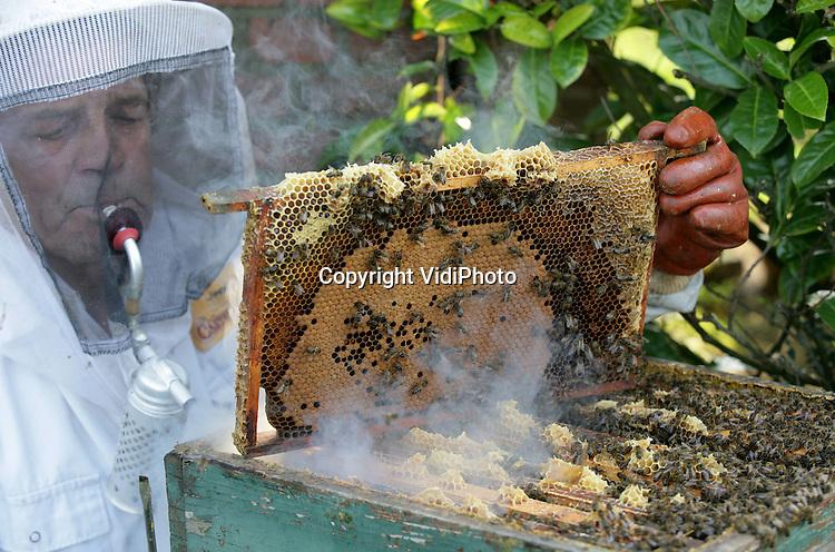 Foto: VidiPhoto..PUIFLIJK - Imker D. van de Vendel uit Puiflijk -met 350 kasten een van de grootste imkers van Nederland- controleert zijn bijenkasten op dode bijen. Als gevolg van de varroamijt -een parasiet op de bij- is tijdens de winterperiode zo'n 40 procent van de bijen overleden. Dat blijkt nu de dieren uitvliegen. Het probleem wordt ieder jaar groter omdat de varraomij vrijwel resistent is tegen het bestrijdingsmiddel. Ook zaadtelers maken zich ongerust omdat zij gebruik maken van bijen voor de veredeling.