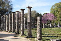 OLYMPIA, GREECE - APRIL, 13 : A view from the side of a row of columns in the Palaestra, on April 13, 2007, in Olympia, Greece. The Palastra, seen throwing shadows in the early morning sun, was built in the 3rd century BC and is part of the Gymnasium complex. The central courtyard was used for boxing and wrestling practice, and the surrounding rooms are of unknown use. After being covered by alluvial deposits for hundreds of years Olympia was rediscovered in 1776, and excavated in the 19th century. (Photo by Manuel Cohen)