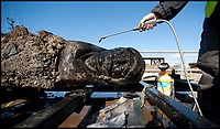 BNPS.co.uk (01202) 558833<br /> Pic: PeterWillows/BNPS<br /> <br /> The rudder when it was pulled out of the water in 2013<br /> <br /> A huge 17th century ship wreck stumbled upon by chance by a dredger has been identified as a wealthy Dutch trading vessel that was ransacked by locals. 