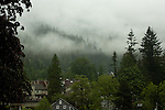 Mist and cloud peaking through the trees over the roofs of Deep Cove. North Vancouver, British Columbia