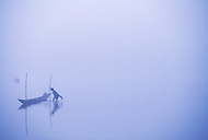 Boy prepares fishing boat in early morning mist, Ban Pak Ou, Luang Phrabang, Laos