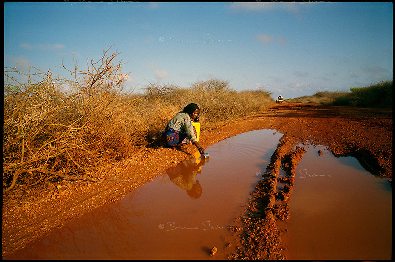 near Baidoa, Somalia, March 2006.A woman drinks murky water from a small puddle left on the main road by a short shower the night before; these occasional showers are totally unsufficient to make vegetation grow again...