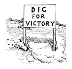 Dig for Victory