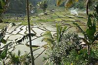 Flores - Indonesia