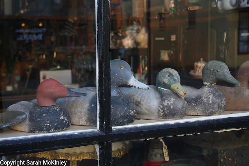 "A row of duck decoys ""look"" out from the window of an antique store in the Old Town part of Eureka in Humboldt County in Northern California."