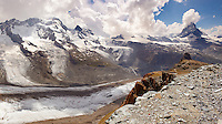 the Gornergletscher glacier viewed from Gornergrat with the Matterhorn. Zermatt .
