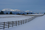 A wood fence stretches across a snowy Pasture on the Rathdrum Prairie <br />