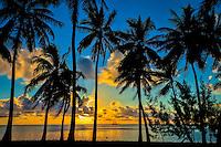 Sunset at Amuri Beach, with a silhouette of palm trees framing a Dawn Treader in the distance, Amuri Beach, Aitutaki Island, Cook Islands