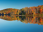 Colorful autumn forest reflecting in lake water under blue sky. Arrowhead Provincial Park, Ontario, Canada.